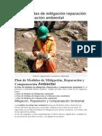 2 Plan medidas de mitigación reparación y compensación ambiental