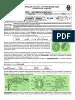 biologia 2do periodo 1 (1)