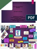 MAPA MENTAL derechos sexuales y reproductivos.pdf