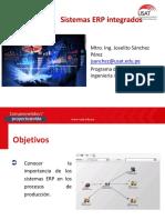 Sistemas ERP integrados (4)