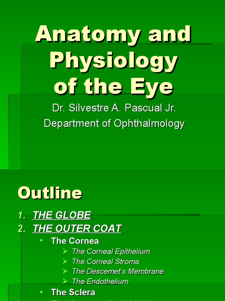 Anatomy and Physiology of the Eye 2008