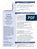 CV Gustavo Garabito Ballesteros 2020 DML ConsOrgyLab