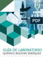 Guia de Laboratorio Químico-convertido.docx