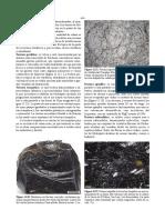 PDGonzalez-libro-Texturas-7