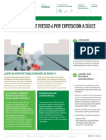 CONDICION NIVEL DE RIESGO 4.pdf