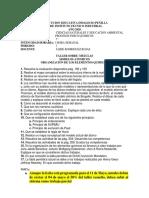 (2020)(20201072)(198)(607) TALLER GRADO 7.pdf