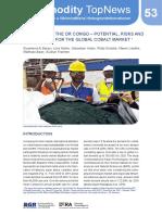 53_kobalt-aus-der-dr-kongo_en.pdf