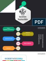 Clase 13 Gestión Sostenible 2020_3