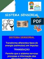 212941143-aula-3-Sistema-sensorial-Fisio-Humana-ppt