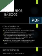 CONCEITOS BÁSICOS GT