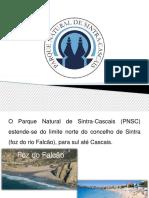 Parque Natural Sintra-Cascais Formandos Olivier Isusi e Vasco Rocha