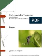 2. Dengue