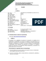Silabo Informatica 2 2020