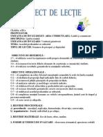 Proiect didactic-gramatica - clasa a III-a