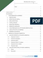 2. Versao Final - Relatorio PSE_v4.docx
