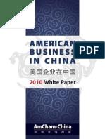 AmCham-White Paper 2010
