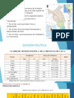 Plan de Desarrollo Estrategico Calca