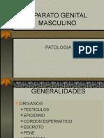 PATOLOGIA DEL APARTAO GENITAL MASCULINO (19)