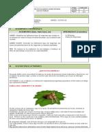 GUIA GESTION EMPRESARIAL PERIODO 2