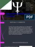 1580361510419_EL-SENTIDO-DE-LA-VISTA
