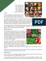 5 REINOS DE LA NATURALEZA