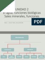 1-2 agua y sales minerales.pdf