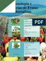 Que frutas se producen en la región Arequipa.docx