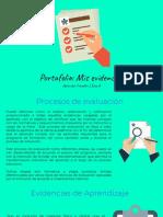 Portafolionnmisnevidencias___495eb5f5e31d9ef___.pdf