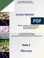 Aula 06 - Células epiteliais - enfoque célula beta do pâncreas - Bloco 02