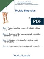 Aula 08 - Células musculares - enfoque tecido muscular estriado esquelético