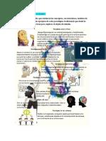 Aporte individual Fase2 Paradigmas de investigacion