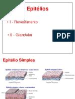 Aula 02 Epitélios_2.pdf