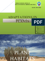 Adaptation in Plants PPT-1