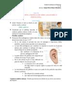 16 INTRODUCCION A MODULO DE OIDO (ANATOMIA Y FISIOLOGIA)