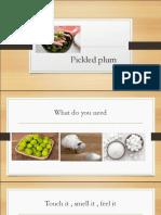 plum process.pdf