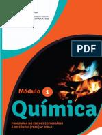 Módulo 1 Química.pdf
