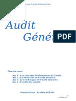 audit-general