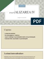 Totalizarea IV.pptx
