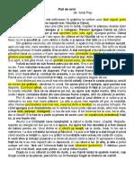 puii_de_arici (1).pdf