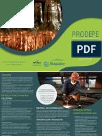 folder_prodepe