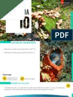 Obtenção_de_matéria_pelos_heterotróficos.pptx