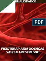 FISIOTERAPIA-EM-DOENÇAS-VASCULARES-DO-SNC.pdf