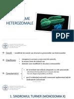 Sindroame-heterozomale-martie-2020-pdf.pdf