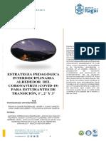 1. CICLO 1 PROFESORES GUIA COVID 19 DE SEMI 2020 (2)