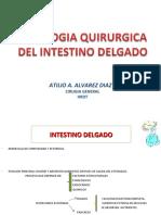 150623455-22-Patologia-Quirurgica-Del-Intestino-Delgado-2011
