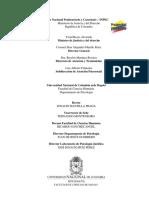 Tema 4. Programa de intervencion - Paso a paso  RIV