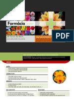 Test_Flores_Bach.pdf
