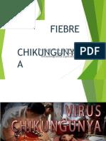 chikungunya2016-161208233958-convertido