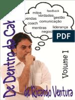 160935209-eBook-de-Dentro-Da-Cabeca-Ricardo-Ventura-Vol1.pdf