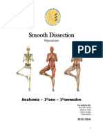 Smooth Dissection #époarraso